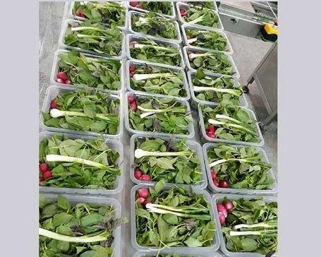 سبزی آماده