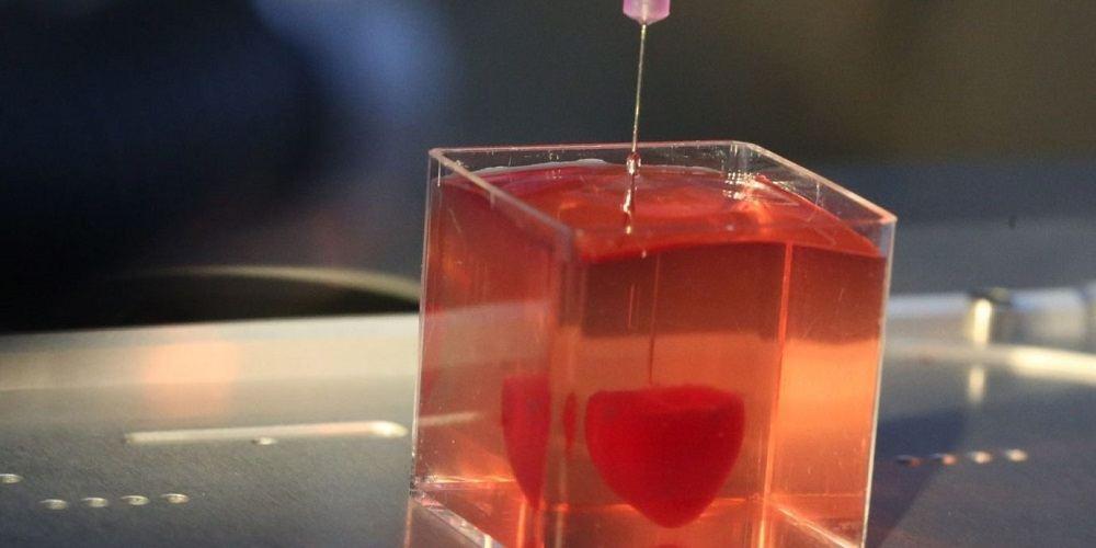 راز تولید اندامهای سه بعدی+ویدیو
