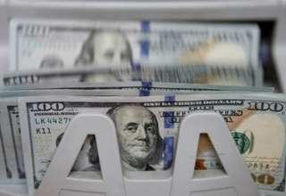 دولت دلار ۴۲۰۰ تومان را محدود به کالاهای اساسی کند/ سامانه نیما در فضای تحریم نقض غرض است