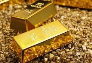 قدم بعدی قیمت طلا سقوط  است یا صعود؟
