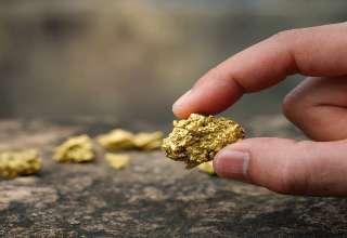 آیا قیمت طلا همچنان افزایشی باقی خواهد ماند؟