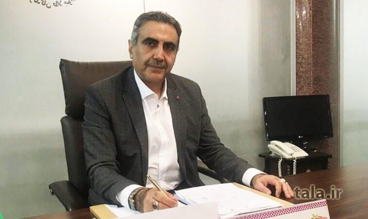 محمد حسین مستغنی