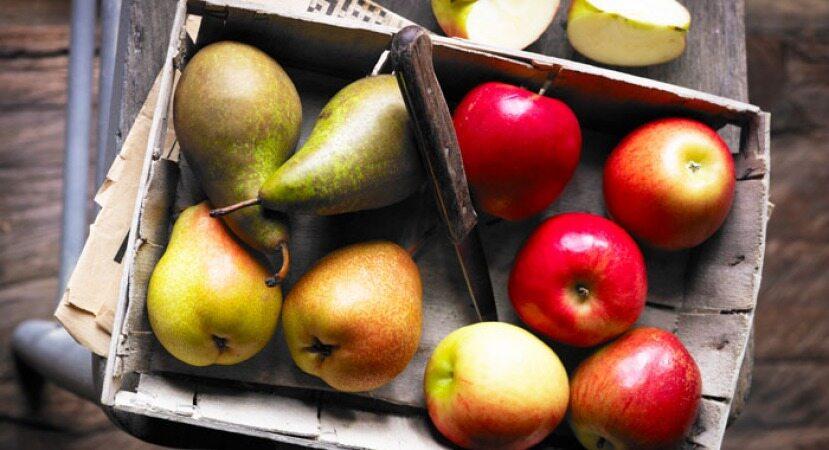شکل بدن شما گلابی است یا سیب؟
