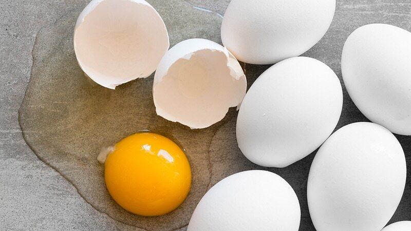 با خوردن یک عدد تخم مرغ در روز چربی های خود را از دست می دهید