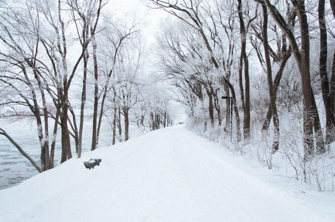 عکس های زیبا از طبیعت برفی که شما را جادو خواهد کرد