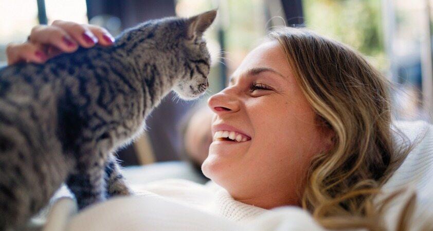 از روی علاقه تان به گربه ها و سگ ها شخصیت تان را پیدا کنید