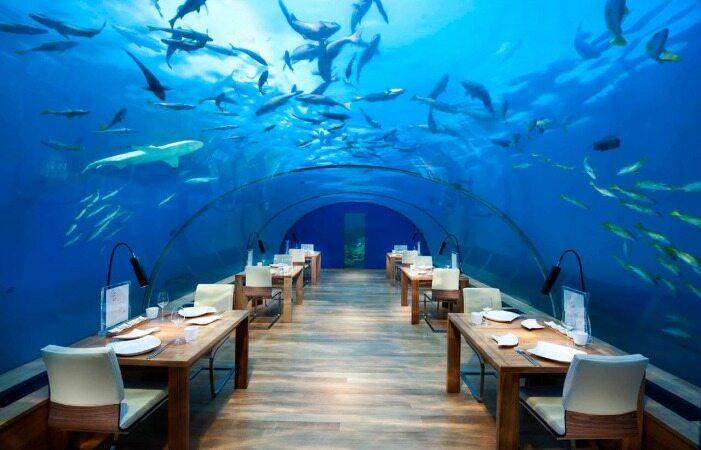6 رستوران عجیب که آرزوی رفتن به آن را پیدا خواهید کرد
