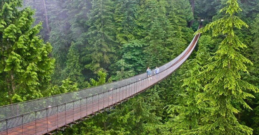 زیبا ترین پل های جهان که از دیدن آنها شگفت زده خواهید شد