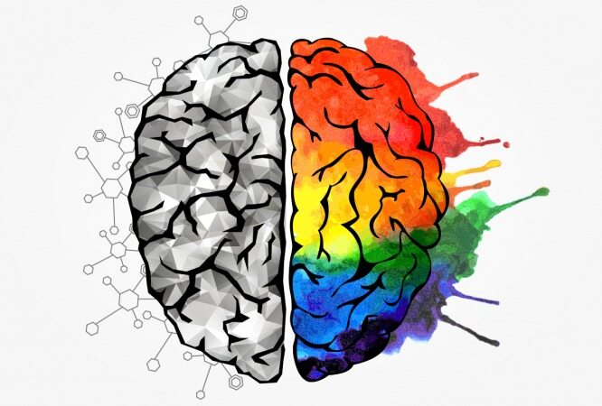 با انجام این تست روانشناسی میزان هوش نیمکره مغز را بسنجید