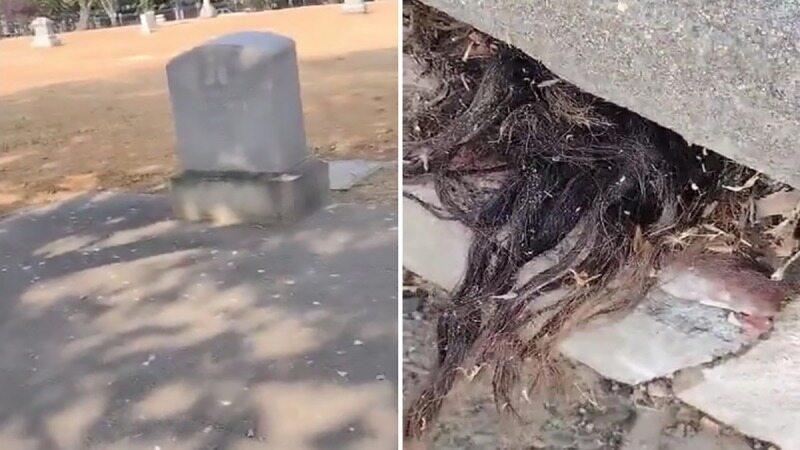برخورد ترسناک با موهایی که از قبری قدیمی بیرون زدهاند