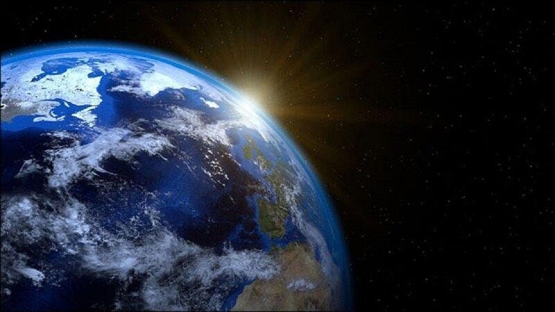 ۱۱ گونه حیاتی که برای نجات سیاره زمین به آنها نیاز داریم