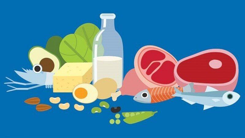 مهم ترین منابع پروتئین که برای بدن شما ضروری هستند را بشناسید